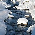 Snowy River View by Kiril Stanchev