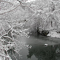 Snowy Wissahickon Creek by Bill Cannon