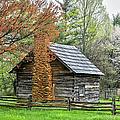 Spring Cabin I - Blue Ridge Parkway by Dan Carmichael