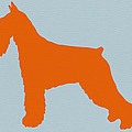 Standard Schnauzer Orange by Naxart Studio