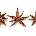 Star Anise Fruits by Fabrizio Troiani
