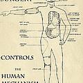 Surgery Controls The Human Mechanism   1906 by Daniel Hagerman