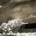 Surreal Infrared Sepia Rural Barn Landscape by Kathy Fornal