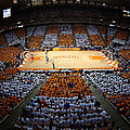 Tennessee Volunteers Thompson-boling Arena by Replay Photos