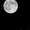 The Moon by Paul Cowan