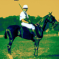 The Polo Player - 20130208 by Wingsdomain Art and Photography