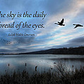 The Sky by Lori Deiter
