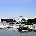The Untamed Sea by Will Borden