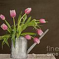 Tulip Bouquet  by Alana Ranney