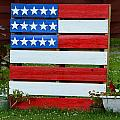 Usa Flag by Kim Stafford