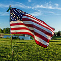 Usa Flag by Phyllis Bradd