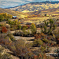 Valley View by Robert Bales