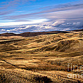 Vast View Of The Rolling Hills by Robert Bales