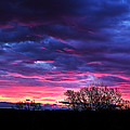 Vibrant Sunrise by Tim Buisman