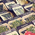 Vintage Seed Packages by Edward Fielding