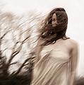 Windy by Margie Hurwich