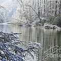 Winter Along Williams River by Thomas R Fletcher