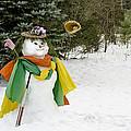 Winter Baseball Ball Gown  by LeeAnn McLaneGoetz McLaneGoetzStudioLLCcom