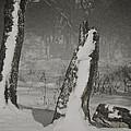 Winter Gate by Odd Jeppesen