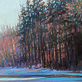 Winter Pines by Ed Chesnovitch