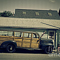 Woody Bus by Alana Ranney