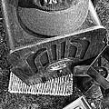 Yankee Cap by Ron Regalado