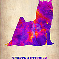 Yorkshire Terrier Poster by Naxart Studio