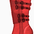 Boot, X-ray by Ted Kinsman