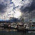 Calm Before The Storm by Wingsdomain Art and Photography