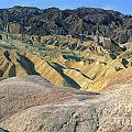 Death Valley Morning by Sandra Bronstein
