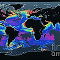 False-col Satellite Image Of Worlds by Dr. Gene Feldman, NASA Goddard Space Flight Center