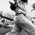 Ted Williams Of The Boston Red Sox, Ca by Everett