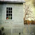 Old Farm  House Window  by Sandra Cunningham