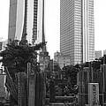 Tokyo by Bernard Wolff
