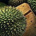 A Durian Fruit - Popular In South East by Justin Guariglia
