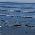 A Longboard Surfer Watches The Surf by Rich Reid