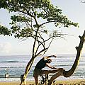 A Woman Stretches On A Beach by Skip Brown