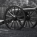 Appomattox Cannon by Teresa Mucha