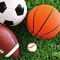 Assortment Of Sport Balls On Grass by Sandra Cunningham