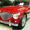 Austin Healy by Cathie Tyler
