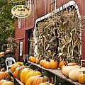 Autumn Farm Stand  by John Greim