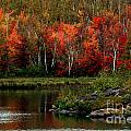 Autumn In Canada 2 by Marjorie Imbeau