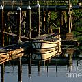 Back At The Harbor by Sandra Bronstein