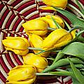 Basket Full Of Tulips by Garry Gay