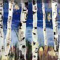 Birches by Cathy Weaver