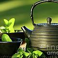 Black Asian Teapot With Mint Tea by Sandra Cunningham