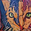 Colors Of A Cat by Ruth Edward Anderson