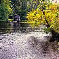 Concord River At Old North Bridge II by Nigel Fletcher-Jones