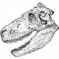 Daspletosaurus - Dinosaur by Karl Addison