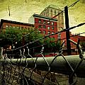 Down The Fence by Cathie Tyler